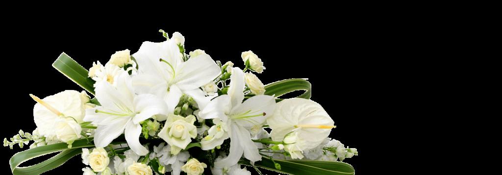 Cvjećara u Bosni i Hercegovini online